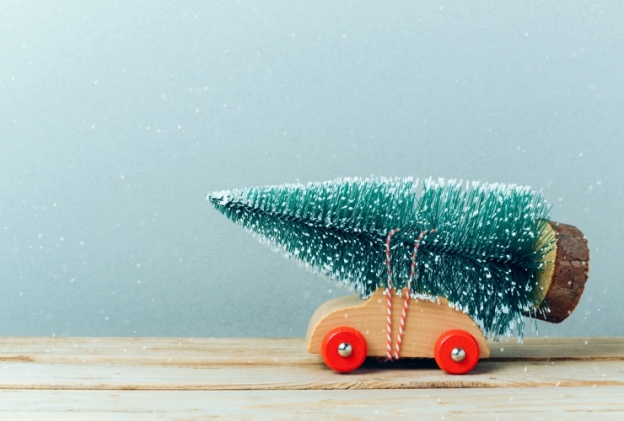 A toy car drives with a toy tree tied to its roof.