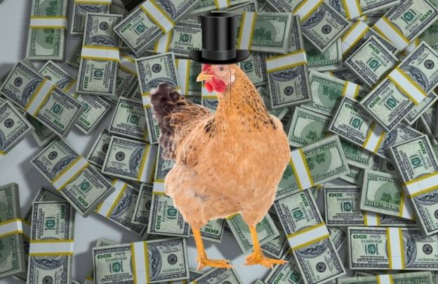 Chicken wearing a monocle and top hat stands in front of a lot of money