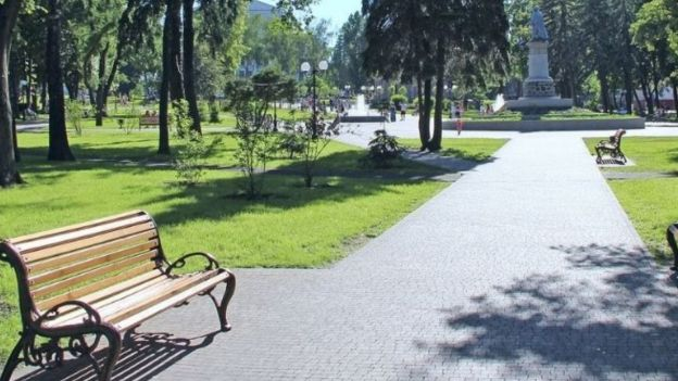 Image of a bench in a lush green park